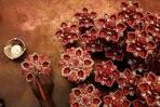 华丽美艳图说印度屠妖节--民俗--美育--姿格网