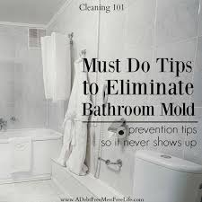 must do tips to eliminate shower mold best cleaning tips