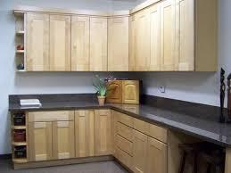 kitchen terrific rta kitchen cabinets design rta cabinets florida