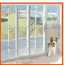 install cat door in glass images glass door interior doors