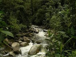 Anchicayá River
