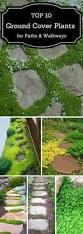 walkway ideas for backyard best 25 backyard walkway ideas only on pinterest walkways