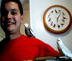 Mathew & Chi-Chi image of man with white faced cockatiel. This is Mathew a White Faced Cockatiel with his new owner Adolfo Galaz and his new ... - sept2004