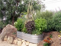 nice patio vegetable garden ideas small vegetable garden plans and