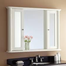 Mirrored Medicine Cabinet Doors by Bathroom Lowes Medicine Cabinets Kohler Medicine Cabinet Lowes
