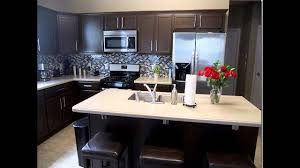 Popular Kitchen Cabinet Styles Brilliant Dark Kitchen Cabinet Ideas Best Dark Kitchen Cabinets