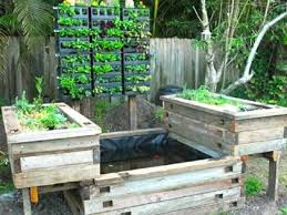 How To DIY Aquaponics The How To DIY Guide On Building Your Very - Backyard aquaponics system design