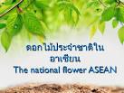 โครงงานคอมพิวเตอร์สื่อการสอน เรื่อง ดอกไม้ประจำชาติในอาเซียน