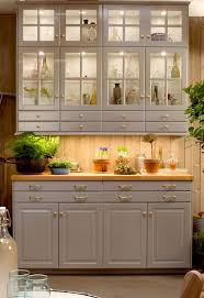 Ash Kitchen Cabinets by Top 25 Best Ikea Kitchen Cabinets Ideas On Pinterest Ikea