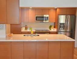 Euro Design Kitchen Cabinet Crafters Inc U2013 Contemporary Euro Kitchen