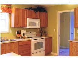 Restaining Kitchen Cabinets Light Oak Cabinets With Dark Wood Flooring Awesome Smart Home Design