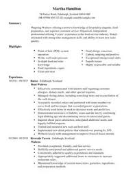 Resume Examples First Job  resume template first job cv template     Geckoandfly Write A Quick Cv How To Write A Cv Or Curriculum Vitae With Free Sample Cv