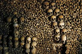 airbnb offers night in paris catacombs for halloween luxuo
