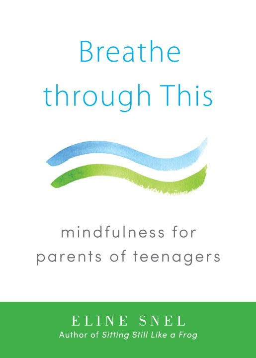 Image result for breathe through this eline snel