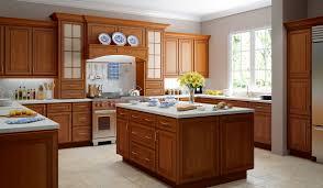 Home Depot Kitchen Ideas Kitchen Transitional Kitchen Backsplash Ideas Kitchen Furniture