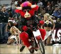 NBA Basketball Mascots: Chicago BULLS Mascot Benny the Bull Pictures