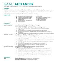 resume examples for project managers best training and development resume example livecareer create my resume