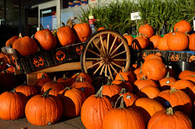 5 halloween attractions in virginia to mark on your calendar