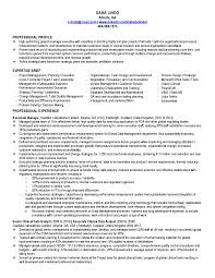 team leader sample resume resume re resume cv cover letter resume re regardless which resume format you choose keep in mind that it is a self