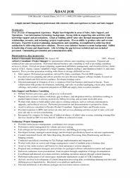 Car Sales Consultant Job Description Resume by Sample Resume Finance Manager Car Dealership Create Professional