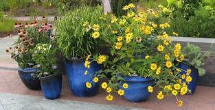 pictures of flowers great container garden recipes
