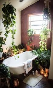 Do It Yourself Bathroom Ideas Colors Best 25 Bathroom Plants Ideas On Pinterest Plants In Bathroom