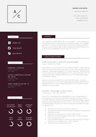 Curriculum Vitae Resume Template 13 Slick And Highly Professional Cv Templates Guru