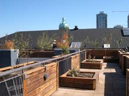 wooden planter box for plants in design concept roof garden