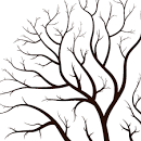 leafless tree outline drawing
