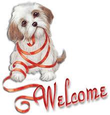 Pershendetje edhe urime per Forumin.! Images?q=tbn:ANd9GcQeyLpSjiBjc2UqIm8A4vcU-95ZuNibJp4pvrGuT3Dy3wwVeV8-9A