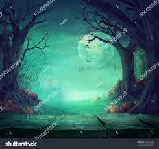 halloween background spooky forest dead trees stock photo