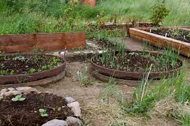 raised bed gardens canadian dirtbags