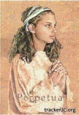 Солсбери Джойс - Перпетуя (199...