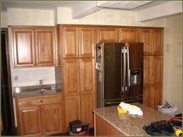 Bathroom Vanity Door Replacement by Kitchen Cabinet Replacement Doors Home Depot Tehranway Decoration