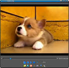 FLVPlayer4Free - Download