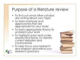 Poverty literature review   Advantages of Selecting Essay Writing     poverty literature review jpg
