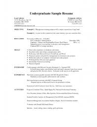 Example Of A Good Cv Cv Examples Science Cv Examples Computer     Professional Reference Letter
