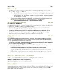 Sample Test Manager Resume by Best Salon Manager Resume Example Livecareer Best Solutions Of