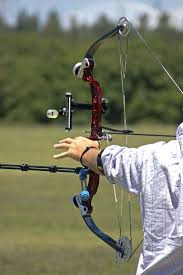 Target Kitchen Knives 595 Best Bows And Blades Images On Pinterest Archery Hunting
