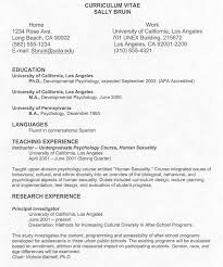 Resume Pattern For Job Application by 8 Sample Of Curriculum Vitae For Job Application Pdf Basic Job