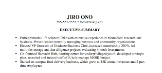 Example For Resume by The Most Important Thing On Your Resume The Executive Summary