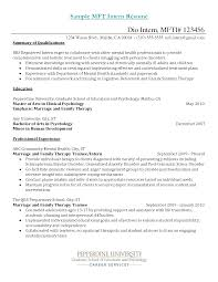 Examples Of Summaries For Resumes  resume template sample personal