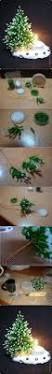 Diy Mini Christmas Trees Pinterest 1960 Best Christmas Crafts Images On Pinterest Holiday Crafts