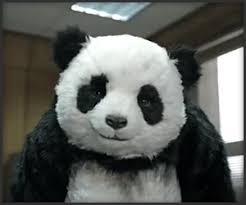 "Nunca le digas que no aun panda ""LOL"" Images?q=tbn:ANd9GcQhttmJLerS3zITBt2O5Xz62obqHk2Zxbo31UvL20b2xt8mYGpj"