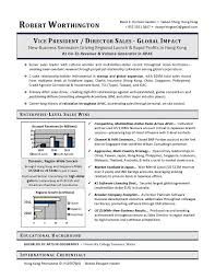 ideas about Sales Resume on Pinterest   Resume Skills     Pinterest VP Sales Sample Resume   Executive resume writer VP  Director  CTO  CIO