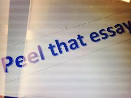 PEEL stands for      point            explain            evidence      and      link       arguably the easiest way to structure the discussion and body paragraph of your essay