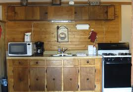 appealing image of rustic cabin kitchens decoration using