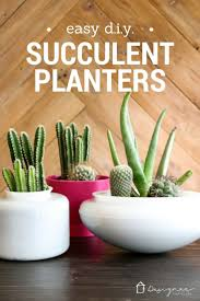 Diy Succulents Diy Planters For Succulents Designer Trapped In A Lawyer U0027s Body