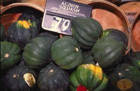 Zucca acorn