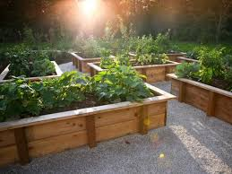 Planning A Raised Bed Vegetable Garden by Raised Bed Vegetable Garden Plans Design Ideas Gyleshomes Com